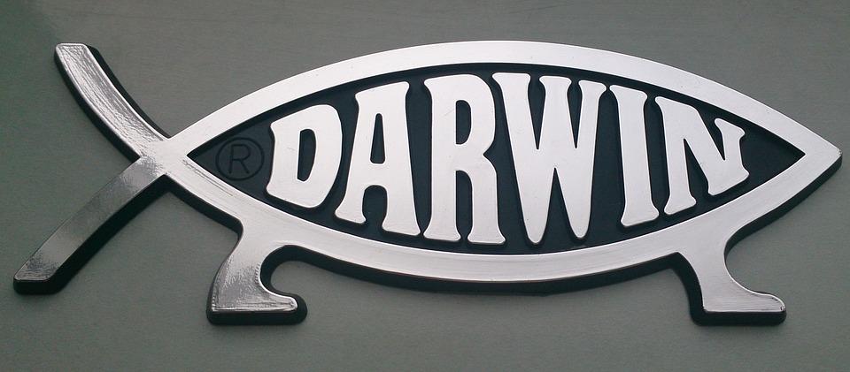 darwin-778446_960_720